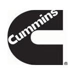 kundenlogo-cumming